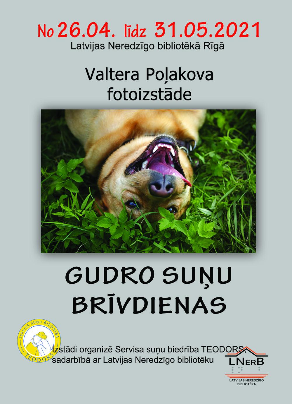 Plakāts Gudro suņu brīvdienas